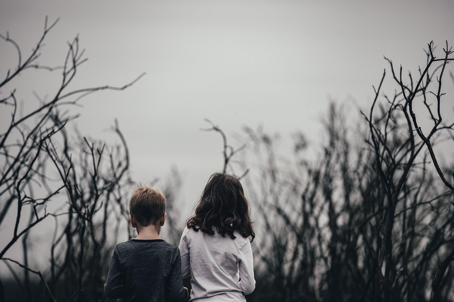 Helping children cope after bushfires